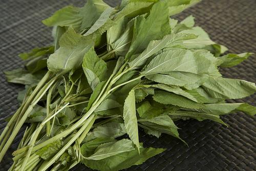 T.L Jute leaf / Rau Day