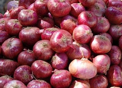 N.L Red Onion ( p – kg )