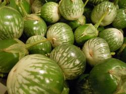 N.L Eggplant ( p – kg )