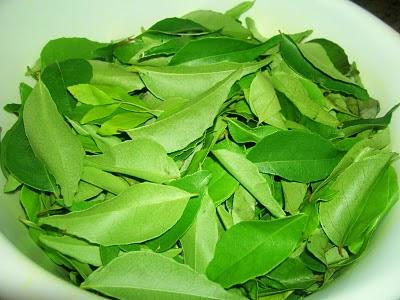 T.L carry leaf