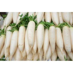 N.L White Radish ( p – kg )