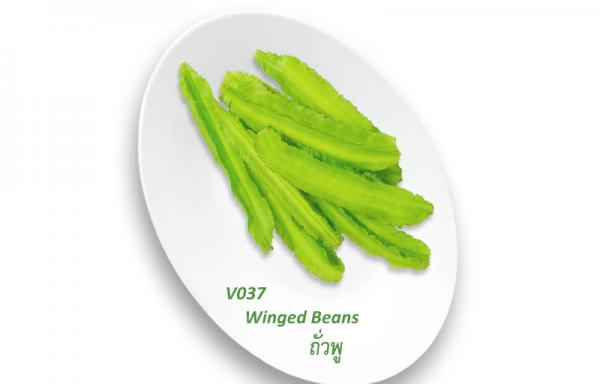 Winged Beans / ถั่วพู