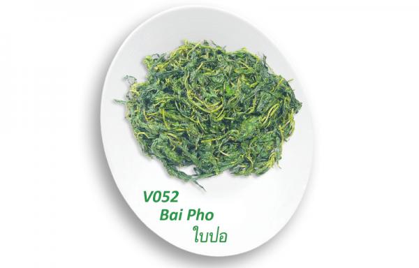 Bai Pho / ใบปอ