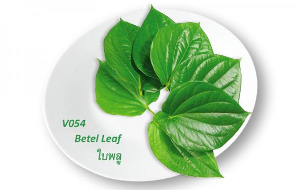 Betel Leaf / ใบพลู