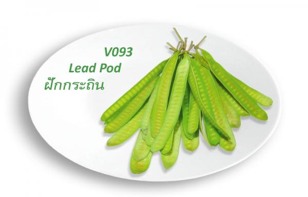 Lead Pod / ฝักกระถิน