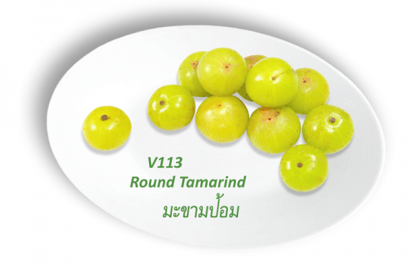 Round Tomarind / มะขามป้อม