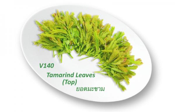 Tamarind Leaves (Top) / ยอดมะขาม