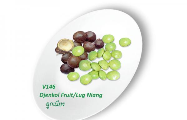 Djenkol Fruit / Lug Niang / ลูกเนียง