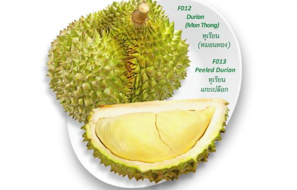 Durian (Mon Thong) / ทุเรียน(หมอนทอง)