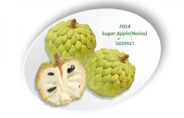 Sugar Apple (Noina) / น้อยหน่า