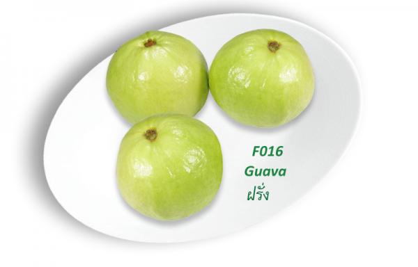 Guava / ฝรั่ง  ( ổi )