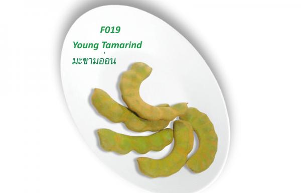 Young Tamarind / มะขามอ่อน
