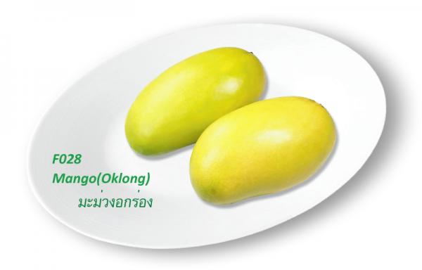 Mango (Oklong) / มะม่วงอกร่อง