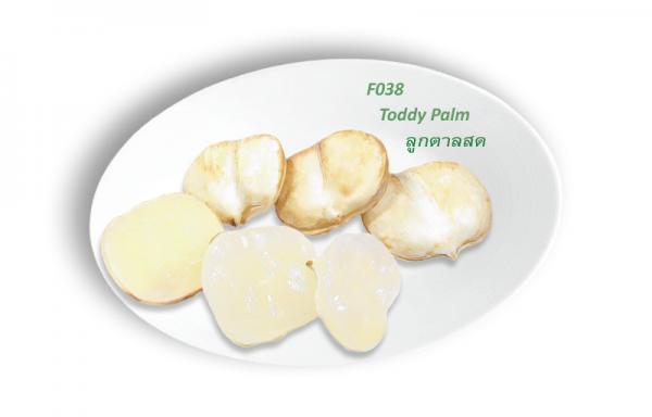 Toddy Palm / ลูกตาลสด